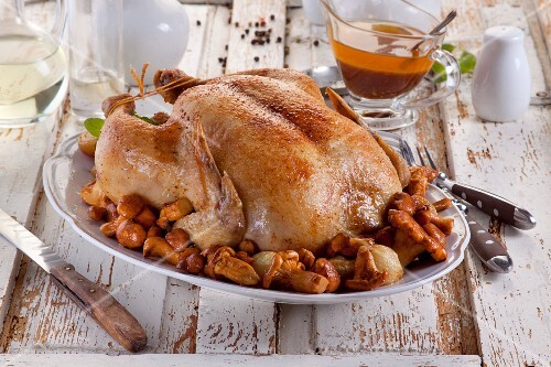 Roast chicken with chanterelle mushrooms and onions