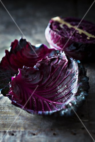 Purple cabbage with droplets of water