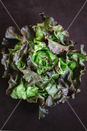 Red and green lettuce on a black surface