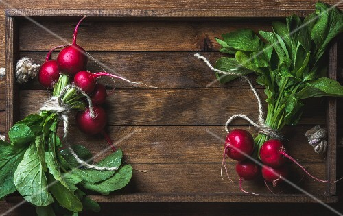Fresh radish banches on wooden tray background