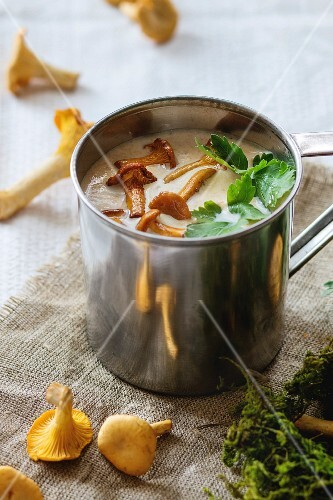 Chanterelle Cream soup in iron mug with parsley, served with fresh mushroom and forest moss over rag on white linen