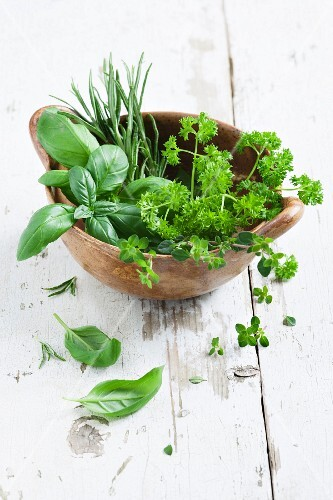 Rosemary, basil, parsley, mint and thyme in a bowl