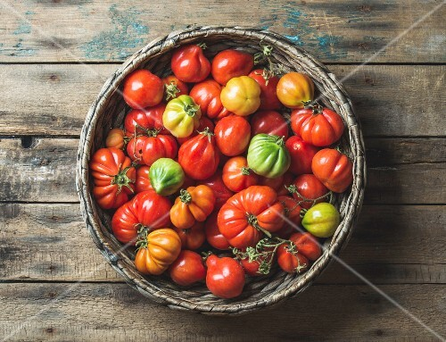 Fresh colorful ripe Fall heirloom tomatoes in basket over wooden background