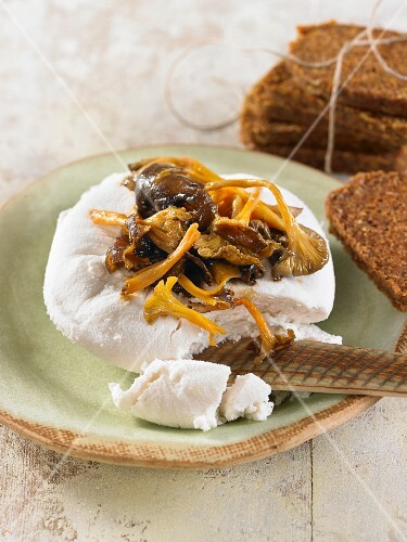 Vegan macadamia nut cheese with chanterelle mushrooms and wholemeal bread