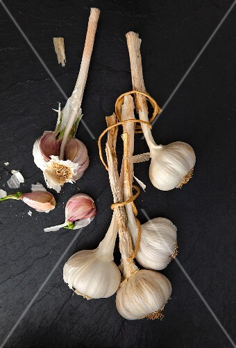Several bulbs of garlic on a slate surface (seen from above)