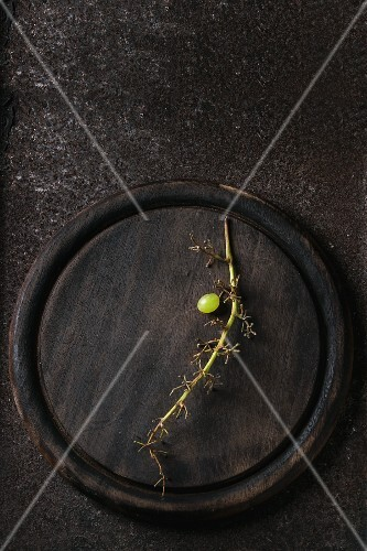 A single white grape on a stalk on a wooden plate (seen from above)