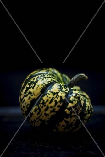 A green and white pumpkin against a dark background