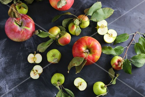 Assorted apples with leaves on a slate platter