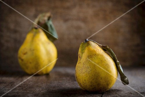 An arrangement of two quinces