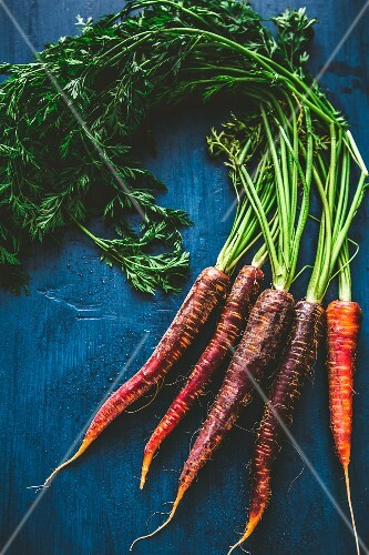 Purple carrots on a blue wooden surface