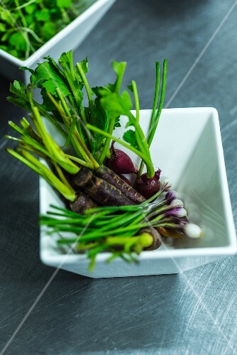 A dish full of micro-vegetables