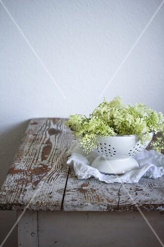 Elderflowers in a footed colander