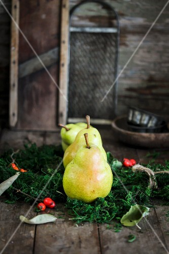 Pears on a bed of moss with rose hips