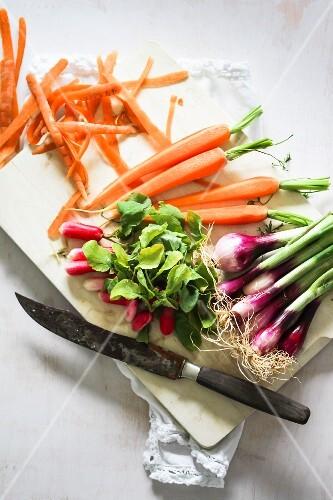 Frühlingsgemüse (Möhren, Radieschen, Frühlingszwiebeln) auf Schneidebrett mit Messer