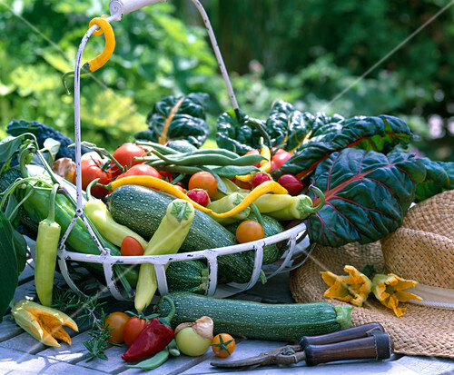 Iron basket with vegetables, peppers, zucchini, beans