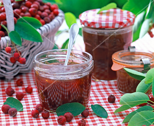 Amelanchier jam in jar with spoon