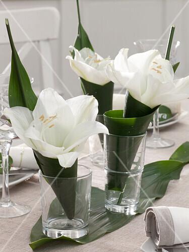 tischdeko mit amaryllis und bild kaufen 12148841 friedrich strauss gartenbildagentur. Black Bedroom Furniture Sets. Home Design Ideas