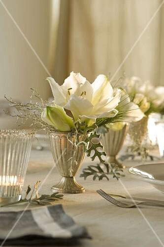 Festliche Amaryllis Tischdeko In Weiss Bild Kaufen 12162149