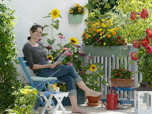 Kast Voor Balkon : Sommerblumen u2013 balkon mit gelb rotem u2026 u2013 bild kaufen 12167429