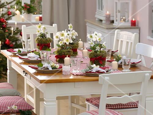 weihnachtliche tischdeko mit helleborus bild kaufen 12177651 friedrich strauss. Black Bedroom Furniture Sets. Home Design Ideas
