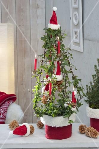 Weihnachtsbaum Drahtgestell.Hedera Helix Efeu An Drahtgestell Als Bild Kaufen 12189077