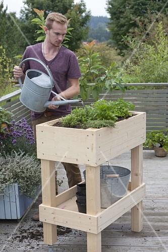 Rollbares Hochbeet Auf Balkon Selbst Bauen Und Mit Krautern