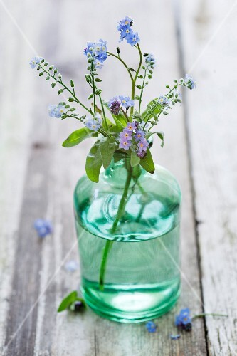 Forget-me-nots (Myosotis) in a green glass vase on a wooden surface