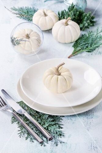 Holiday table setting decoration with white decorative pumpkins, thuja branches and dinner plates