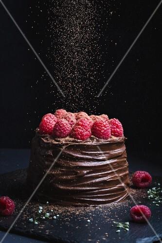 Schokoladenkuchen mit Schokoglasur und Himbeeren mit Kakao bestreuen