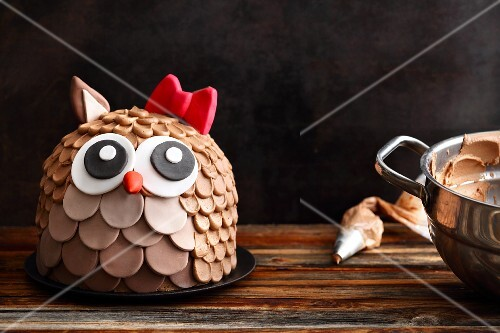 A chocolate cake in the shape of an owl