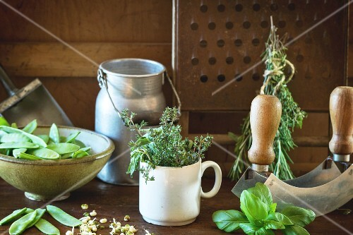 Young sweet peas and mix of herbs rosemary and basil with vintage kitchen utensil over wooden table