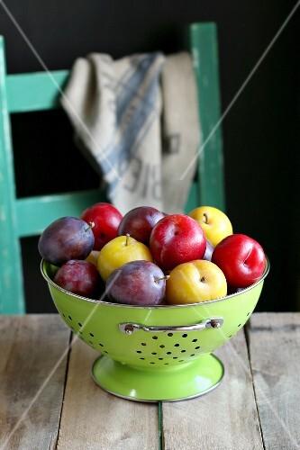 Different kinds of plum in enamel colander