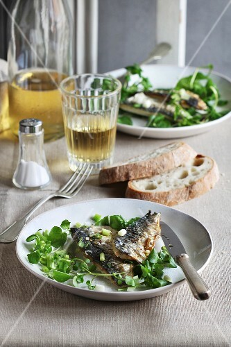 Two fillets of grilled mackerel fish on a plate with watercress salad and a glass of wine