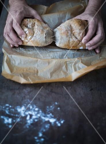 Hände halten frisch gebackenes Schweizer Brot
