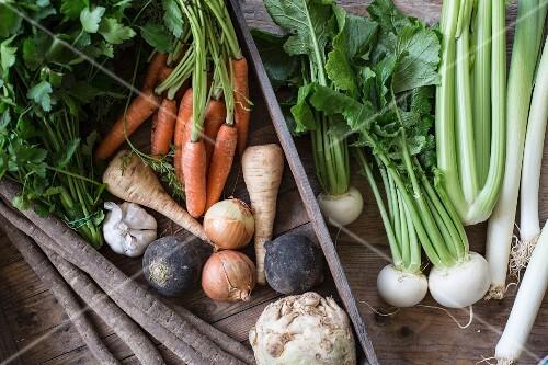 Gemüsekiste mit Wurzelgemüse, Zwiebeln und Petersilie