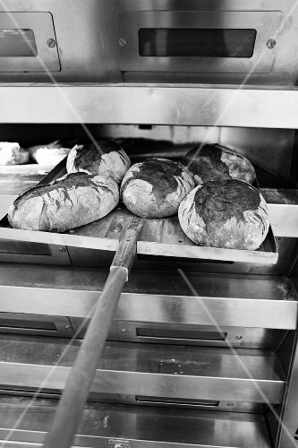 Loaves of bread being taken out of the oven using a peel (baker's shovel)