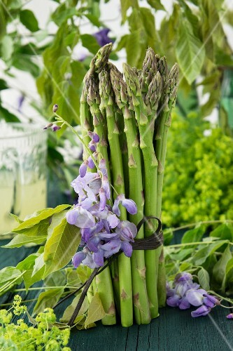 A bunch of green asparagus decorated with wisteria and lady's mantle