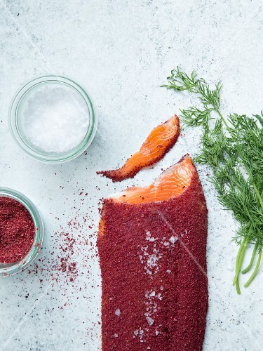 Gravlax with lingonberry powder, salt and dill