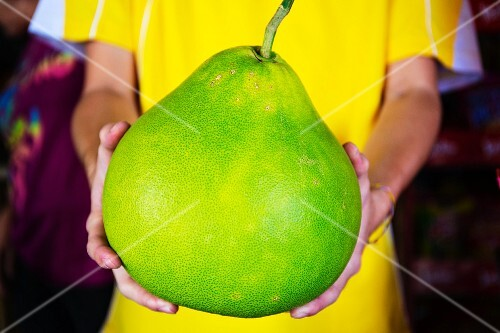 Hands holding a pomelo