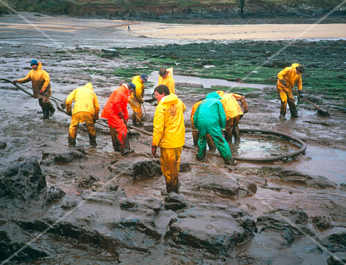 Oil covering a rocky beach with a clean-up team