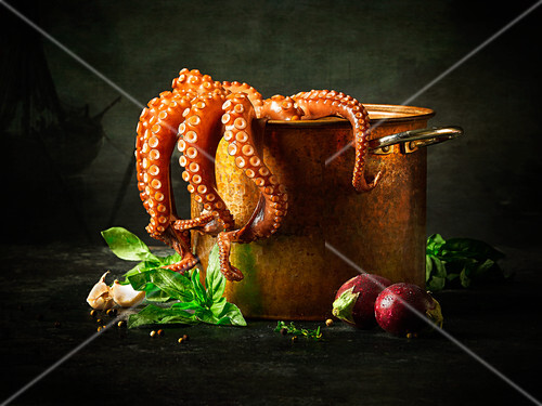 Octopus in a pot with fresh ingredients