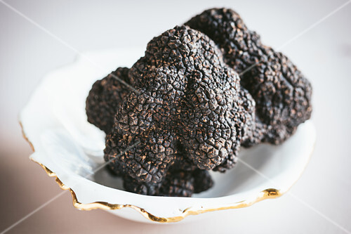Black truffle in a bowl