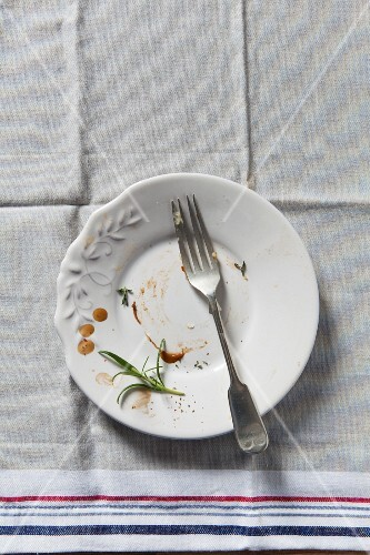 Empty plate (top view)