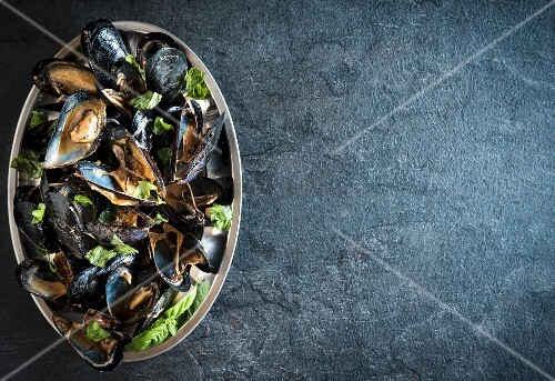 Cooked mussels on a serving platter (seen from above)