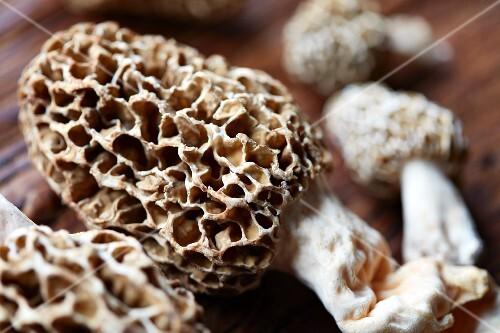 Morel mushrooms (close-up)