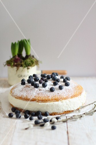 Quark torte with blueberries