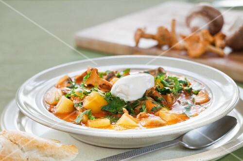Potato goulash with bacon and chanterelle mushrooms