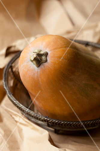Organic butternut squash (close-up)
