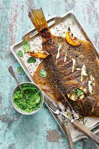 Grilled flat fish with mojo verde