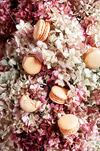 An arrangement of delicate pink made from flowers and macaroons (full frame)